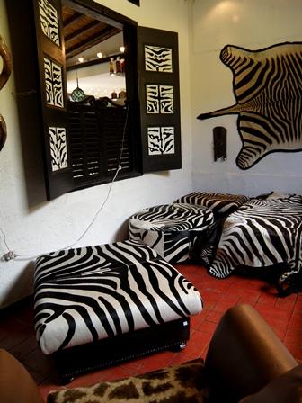 Estas viendo imágenes del artículo: Queen Zebra - Galería