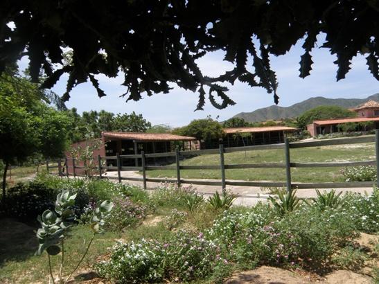 Estas viendo imágenes del artículo: Rancho Macanao - Galería